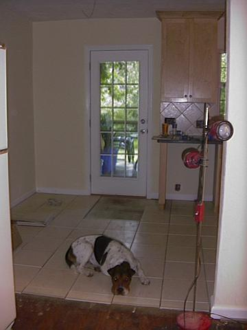 kitchen_boxer_1231839468_o